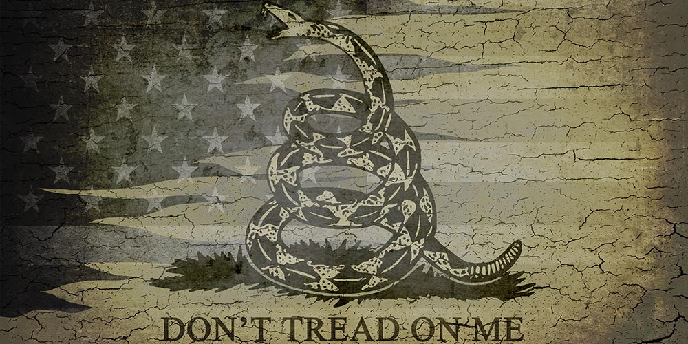 pattern-gs-dont-tread-on-me.jpg